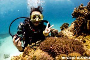 【長灘島潛水】他鄉遇故知,親切台灣人開的馬力歐潛水中心
